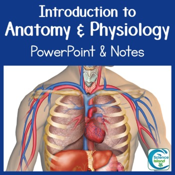 Introduction to Anatomy & Physiology PowerPoint Lesson and Notes