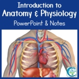 Introduction to Anatomy & Physiology PowerPoint (Distance