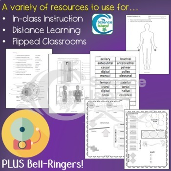 Introduction to Anatomy & Physiology Supplements for Instruction and Assessment