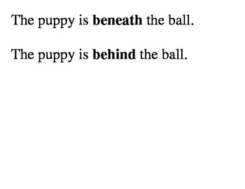 Introduction to Basic Prepositions: Puppy (Text)