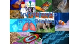 Introduction to Biology Powerpoint W/ Cornell Notes