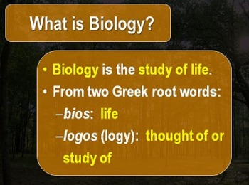 Introduction to Biology - The Branches of Bio
