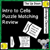 Introduction to Cells Puzzle Matching Review Game
