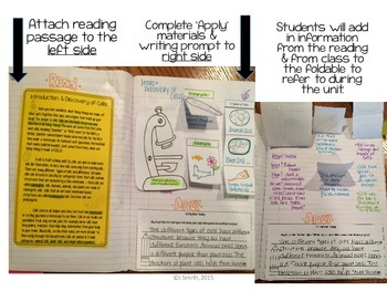 Cells Discovery Reading Comprehension Interactive Notebooks