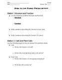Introduction to Cells Station Activity