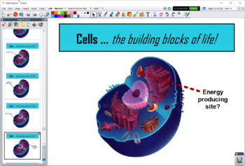 Introduction to Cells and Organelles - Flipchart Presentation