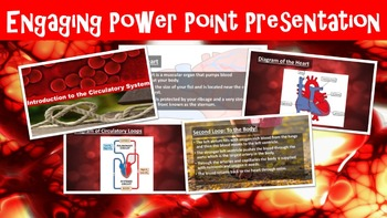 Circulatory System No Prep Lesson with Power Point, Worksheet, Activity