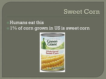 Introduction to Corn and Corn Products