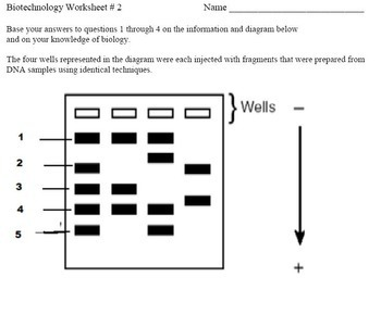 DNA, RNA, Protein Synthesis and Biotechnology Lesson Activities
