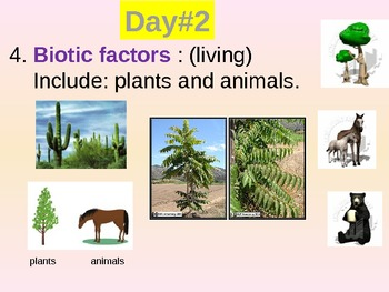 Introduction to Ecology Day#2