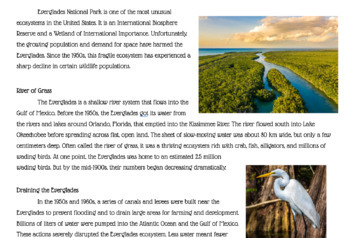 Introduction to Ecology Bundle