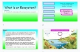 Introduction to Ecosystem Interactive Slides