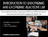Introduction to Endothermic and Exothermic Reactions Lab