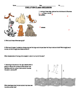 introduction to evolution worksheet - Evolution Worksheet