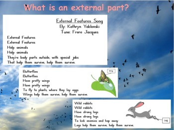 Introduction to External Parts