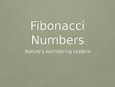 Introduction to Fibonacci