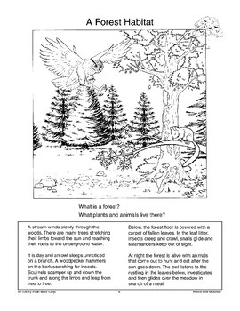 Introduction to Forest and Meadow Habitats