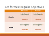 Introduction to French Adjective Agreement Unit