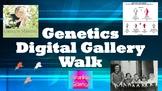 Introduction to Genetics: Digital Gallery Walk