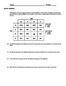 Introduction to Genetics Exam