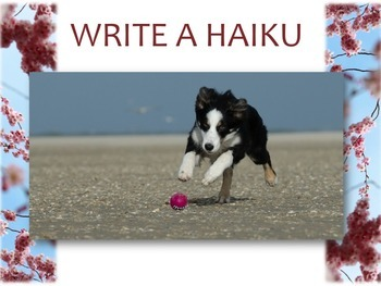 Introduction to Haiku PPT: Background, Structure and Activities