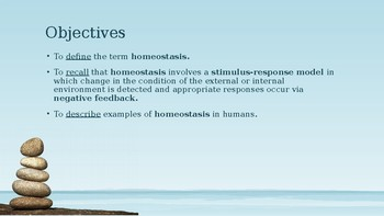 Introduction to Homeostasis PowerPoint