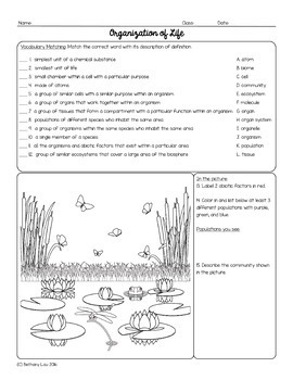 Introduction to Life and Scientific Method Homework Page Bundle