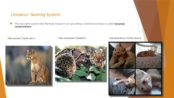 Introduction to Living Things