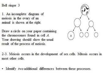 Introduction to Meiosis Lesson Activities