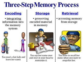 Introduction to Memory, Encoding, and Storage PowerPoint