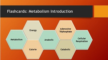 Introduction to Metabolism Interactive PowerPoint