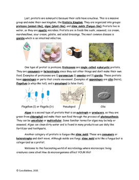 Introduction to Microorganisms Reading & Assessment