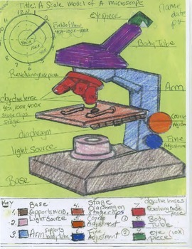 Introduction to Microscopes: Cut and Paste Paper Microscope Model