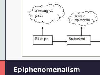 Mind-Body Philosophy (Philosophy of Mind)