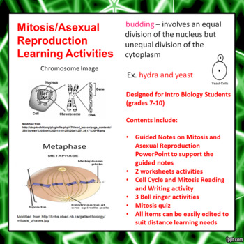 Mitosis and Asexual Reproduction Lesson Activities