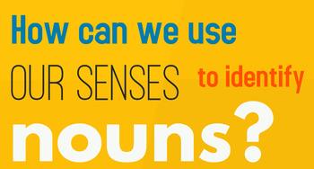 Introduction to Nouns Bundle