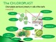 Introduction to Photosynthesis Dynamic PowerPoint.