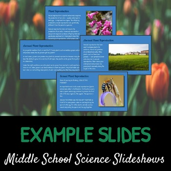 Introduction to Plant Reproduction: A Life Sciences Slideshow!