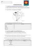 Introduction to Plate Tectonics Online Worksheet / Webquest
