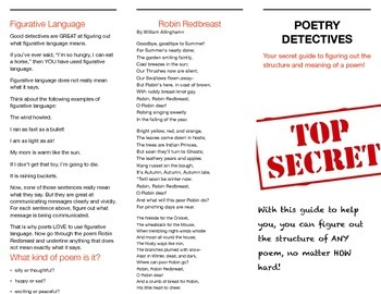 Introduction to Poetry: Stanzas, Rhyme and Figurative Language