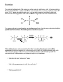 Introduction to Proteins