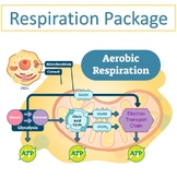 Introduction to Respiration Package