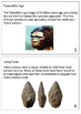 Introduction to prehistory booklet