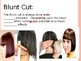Introduction to the Four Basic Haircuts