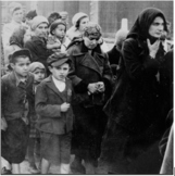 Introduction to the Holocaust: Film & Materials (Complete Bundle)