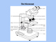 Introduction to the Microscope PowerPoint