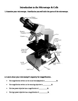 Introduction to the Microscope and Cells