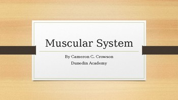 Introduction to the Muscular System