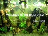Introduction to the Rainforest