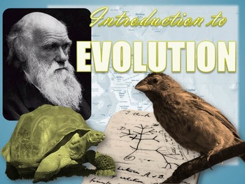 Introduction to the Theory of Evolution